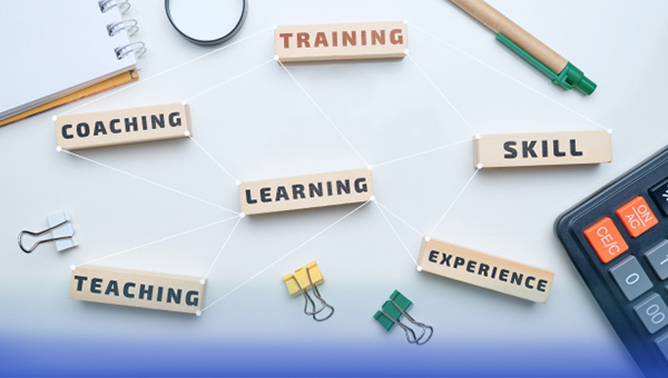 Networking events for professional development